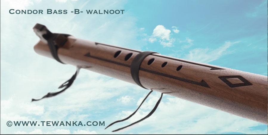 indianen-fluit-condor-B-w3