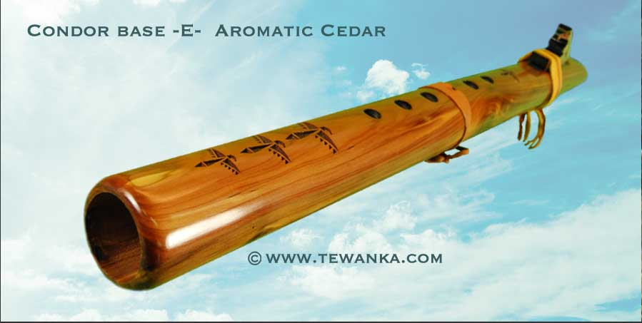 indianen-fluit-Condorb-E-acedar2